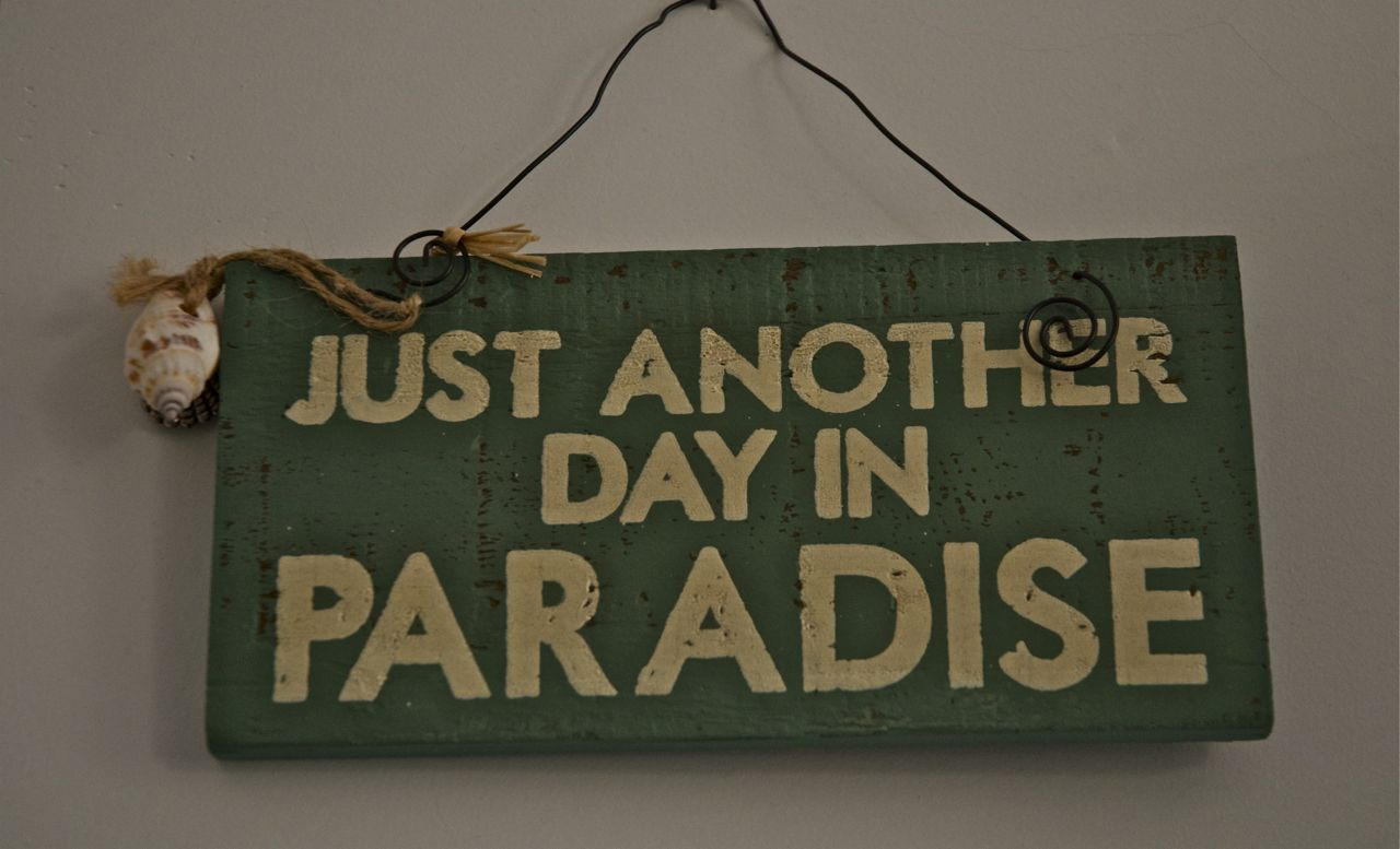 Another Day in Paradise - Wikipedia