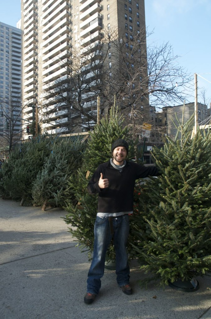 guy selling trees