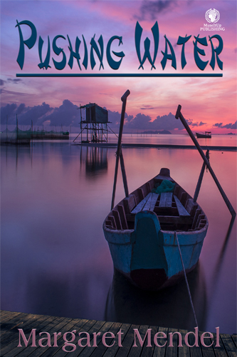 "A COVER REVEAL FOR MY NOVEL ""PUSHING WATER"""